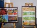 08 illustrazioni varie coltivazioni