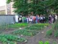 Inaugurazione Orto Didattico Urbani r03