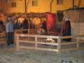 Presepe -08-800